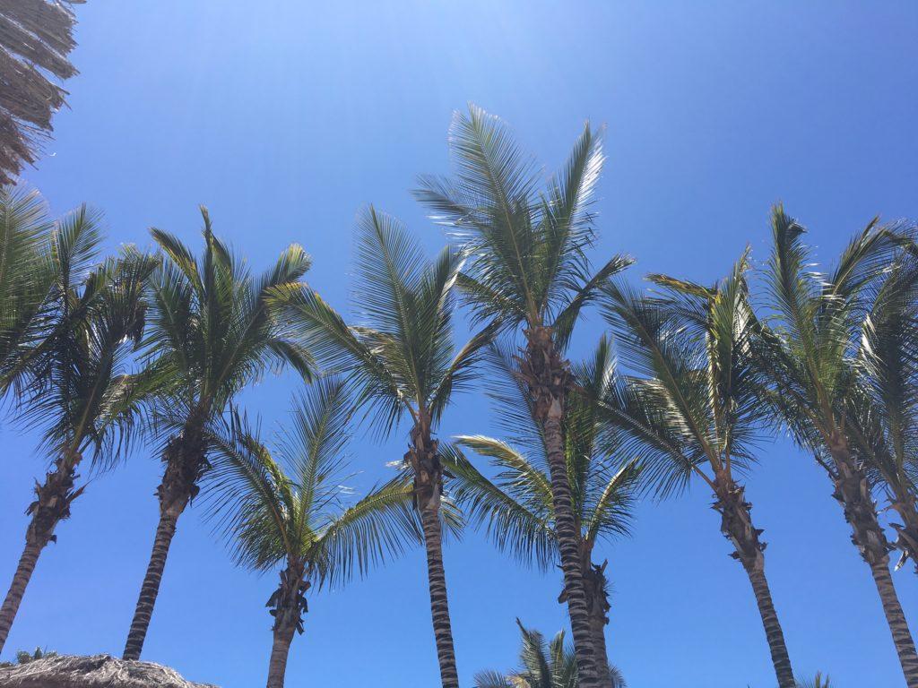reasons-holidays-good-mind